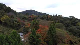 20151120清水寺(その20)