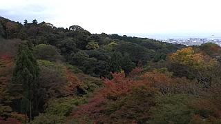 20151120清水寺(その21)