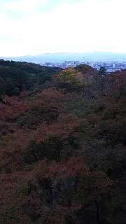 20151120清水寺(その23)