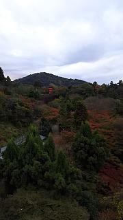 20151120清水寺(その26)