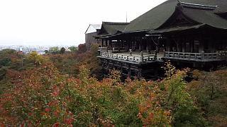 20151120清水寺(その31)