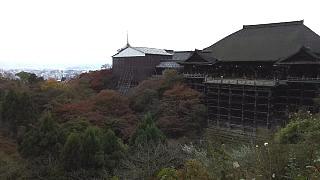 20151120清水寺(その33)