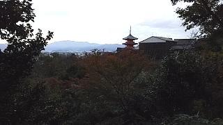 20151120清水寺(その35)