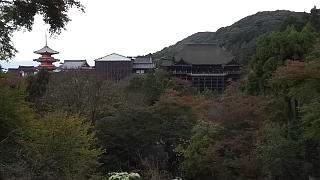 20151120清水寺(その37)