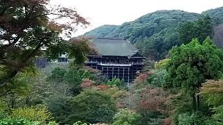 20151120清水寺(その39)