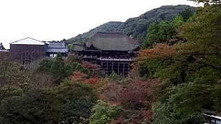 20151120清水寺(その41)