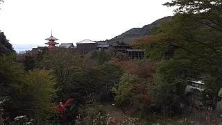20151120清水寺(その42)