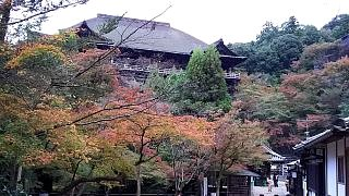20151120清水寺(その44)