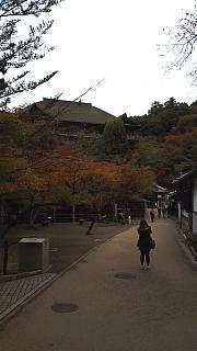 20151120清水寺(その45)