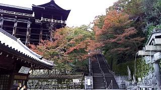 20151120清水寺(その47)