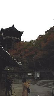 20151120清水寺(その48)