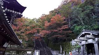 20151120清水寺(その50)
