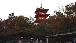 20151120清水寺(その56)