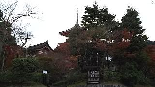 20151120清水寺(その58)
