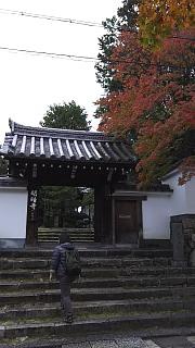 20151120東福寺(その2)