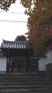 20151120東福寺(その3)
