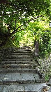 20160430化野念仏寺(その1)