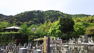 20160430化野念仏寺(その7)