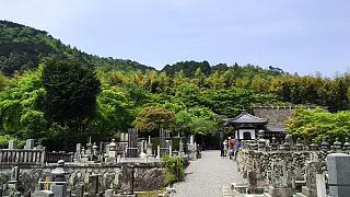 20160430化野念仏寺(その8)