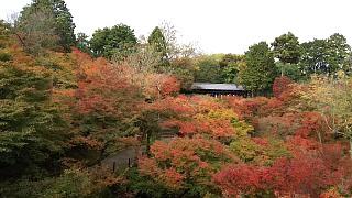 20151120東福寺(その18)