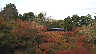 20151120東福寺(その19)