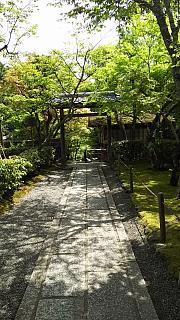 20160430化野念仏寺(その16)