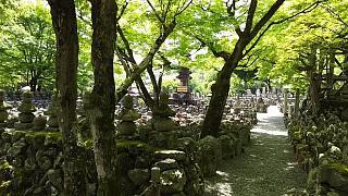 20160430化野念仏寺(その17)