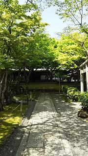 20160430化野念仏寺(その20)