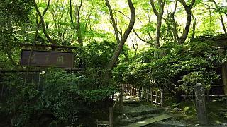 20160430化野念仏寺(その23)