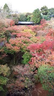20151120東福寺(その30)