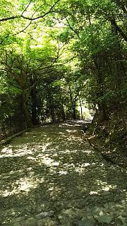 20160430嵐山へ(その5)