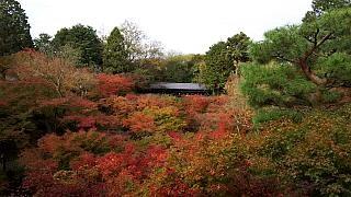 20151120東福寺(その37)