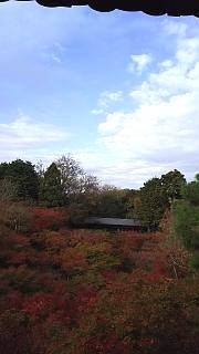 20151120東福寺(その39)