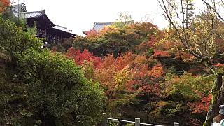 20151120東福寺(その49)