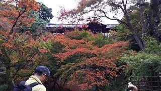 20151120東福寺(その59)