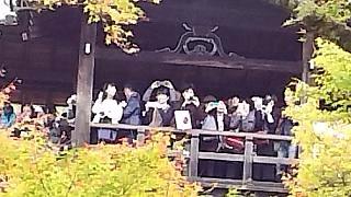 20151120東福寺(その62)