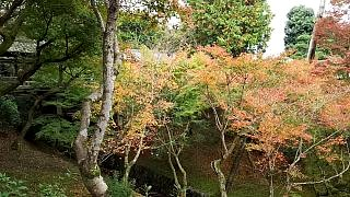 20151120東福寺(その63)