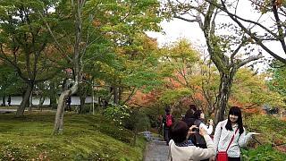 20151120東福寺(その70)