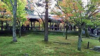 20151120東福寺(その84)