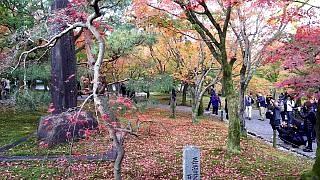 20151120東福寺(その85)
