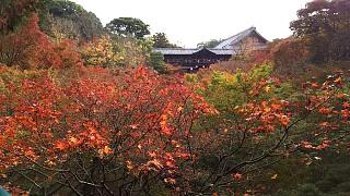 20151120東福寺(その90)