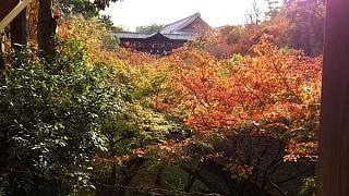 20151120東福寺(その92)
