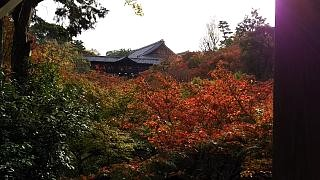 20151120東福寺(その93)