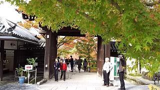 20151120永観堂(その7)