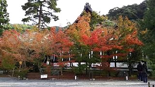 20151120永観堂(その10)