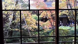 20151120永観堂(その16)