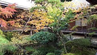 20151120永観堂(その21)