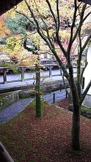 20151120永観堂(その26)