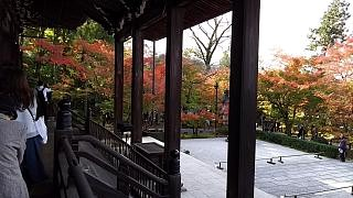 20151120永観堂(その29)