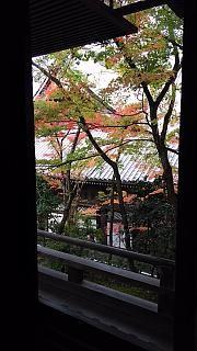 20151120永観堂(その33)